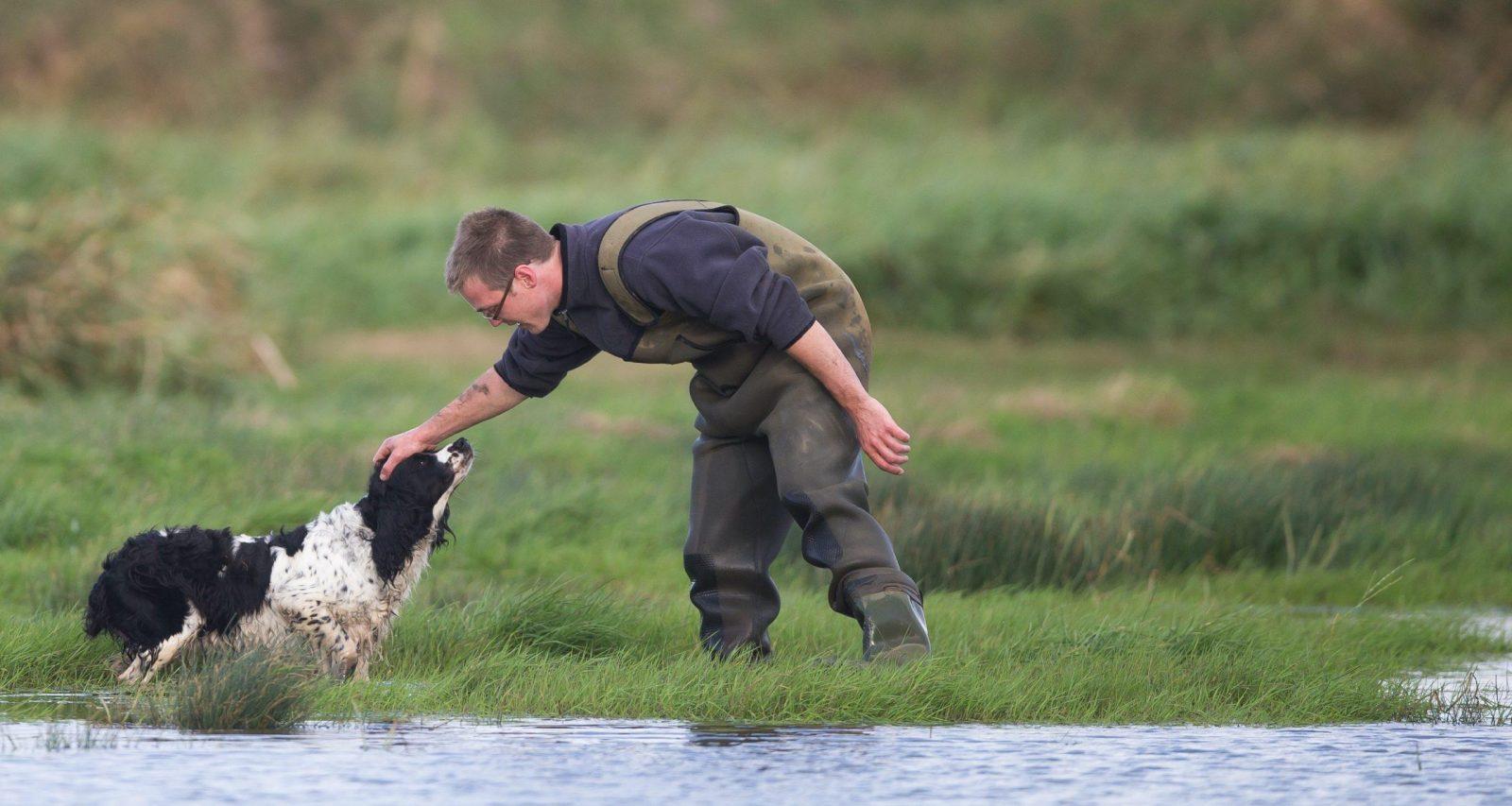 complicité chasseur et son chien chasse au gibier d'eau