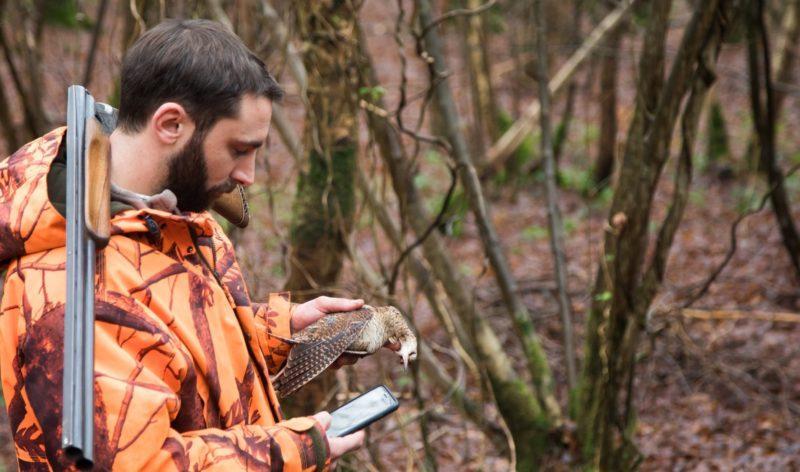 Un chasseur utilise l'application mobile ChassAdapt pour renseigner un prélèvement