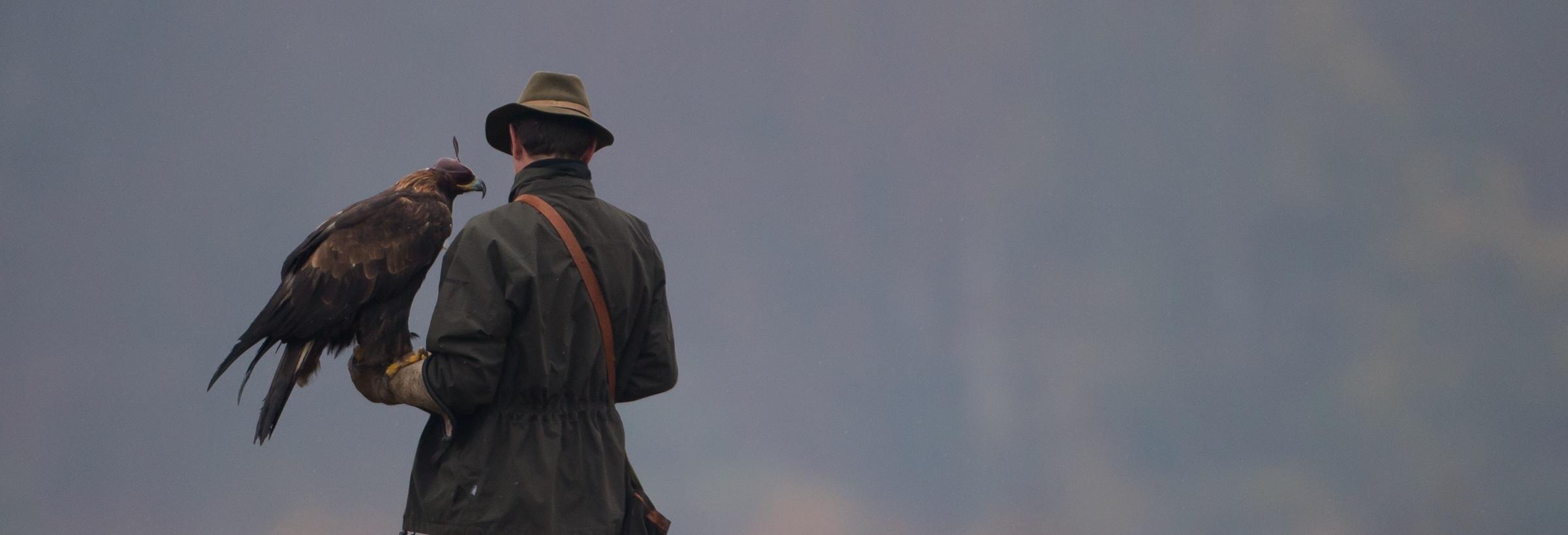 Un chasseur avec son rapace pour la chasse au vol