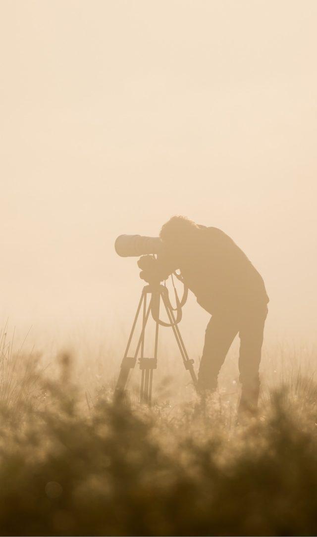 photographe nature chasse