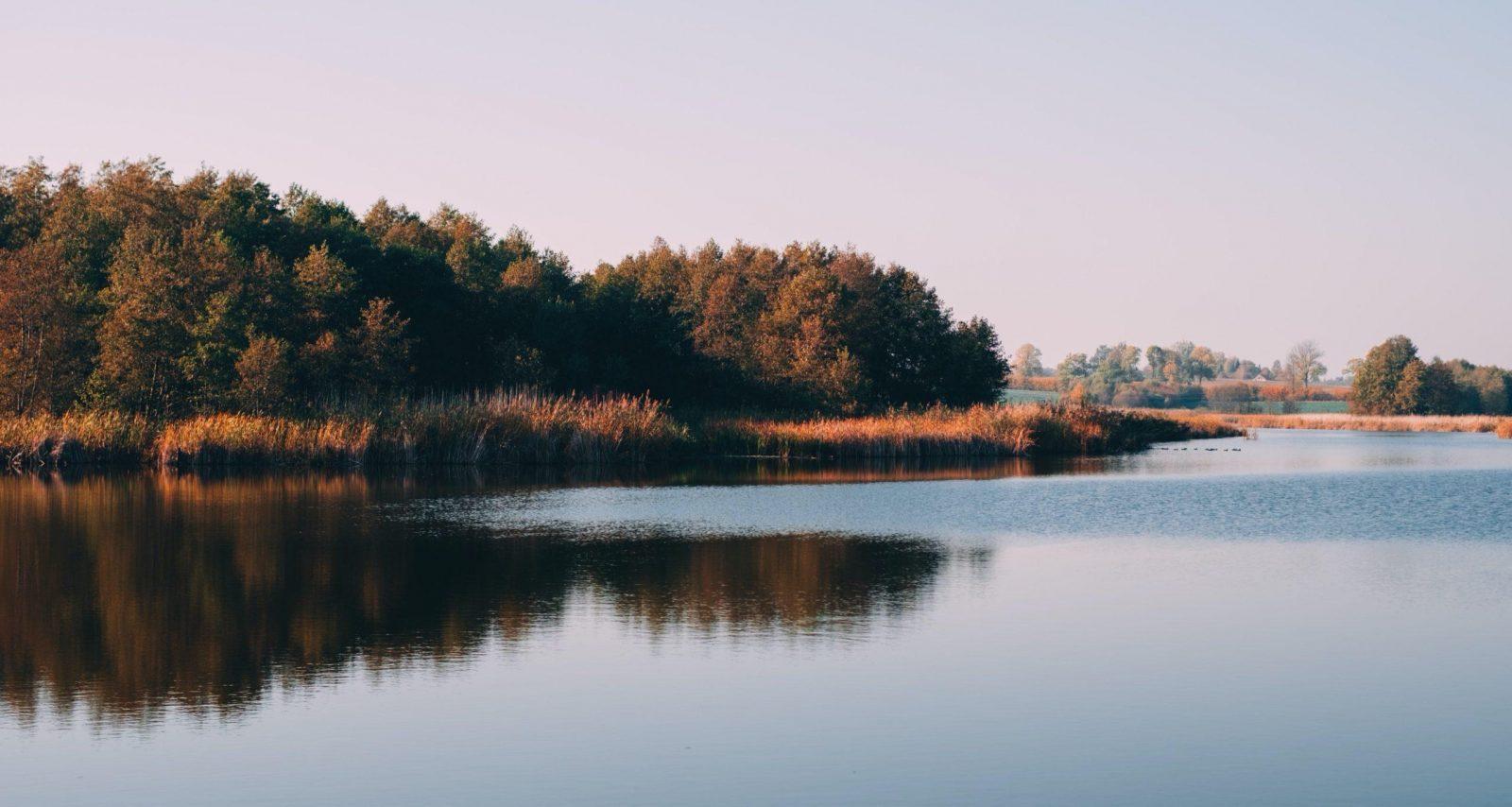 paysage lac étang