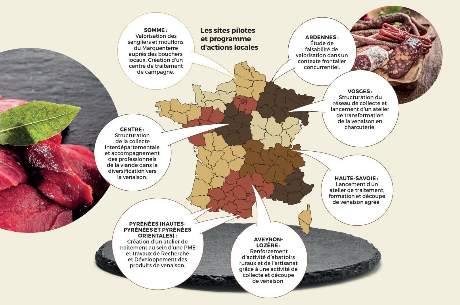 carte actions venaison viande de gibier chasse