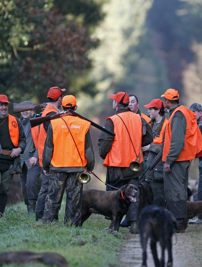 chasseurs avec gilets oranges