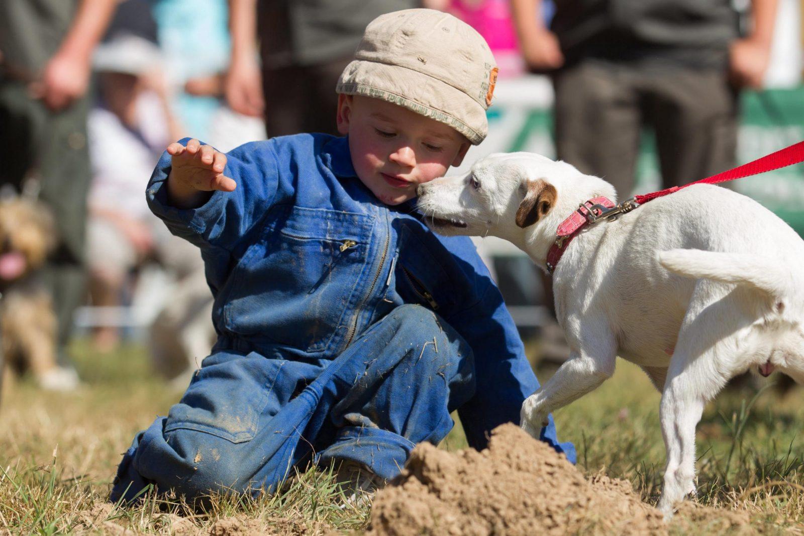 éducation à la nature enfant et chien de chasse