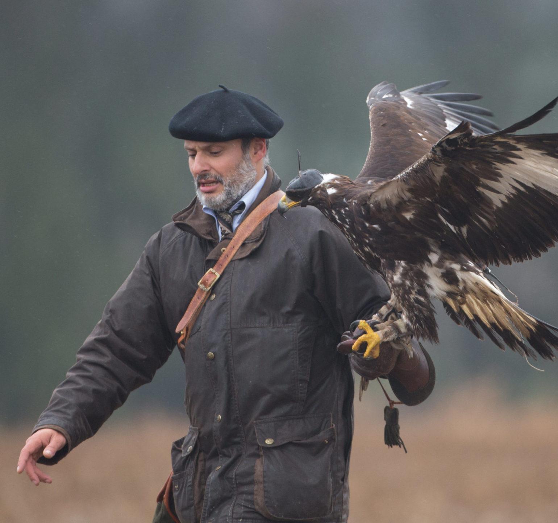 Chasseur chasse au vol avec son oiseau