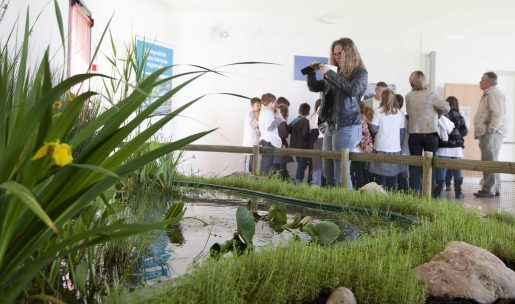 formation nature environnement chasse