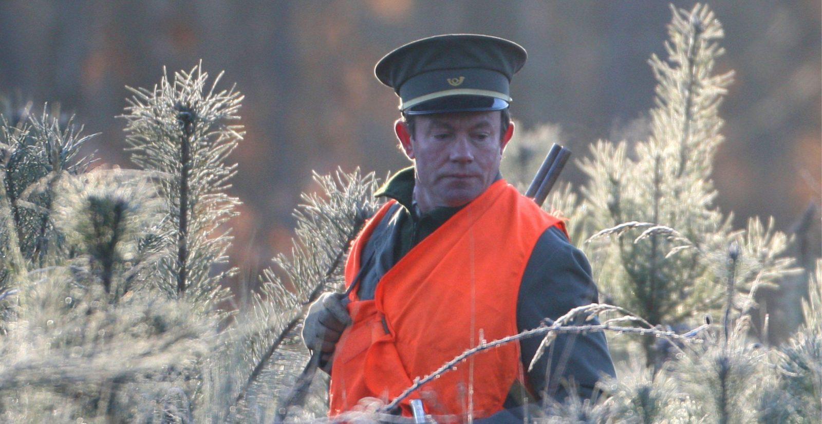 métier de garde chasse en forêt