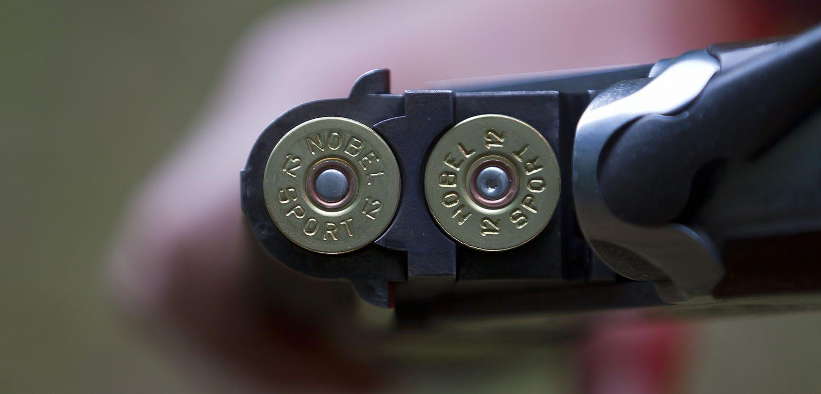 cartouches de fusil de chasse